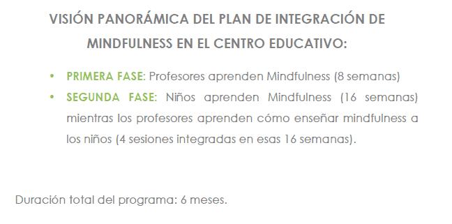 vision mindfulness en la educacion